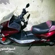طارق حجازي