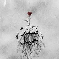 Anas hishmh