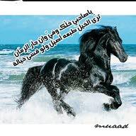 محمد حويطي