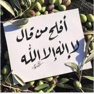 Sharef