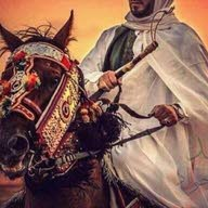 محمد العلوي