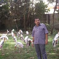 Ahmed Atabani