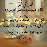 Ameer Amat