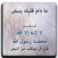 عمار عبدالله