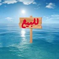 ali علي