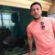 Wael Wahed Mohamed