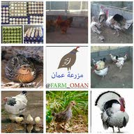 farm oman