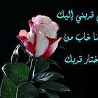 وليد امحمد