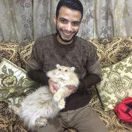 احمد سمير عبد الفتاح