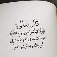 وجدان احمد احمد