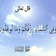 ''وفي السماء رزقكم وما توعدون ''