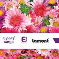 شركة نسمة الزهور التجارية