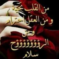 محمد عناني العنانى