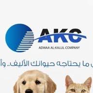 شركة AKC