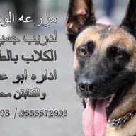 مزرعة الوفاء لتدريب جميع انواع الكلاب