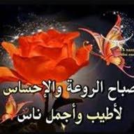 احمدعلي محمد
