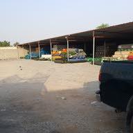 مؤسسة الزيدي لبيع الأعشاب الاصطناعية