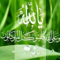 ahmedmohamed reffat