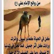 Yasser Abd Elmaged