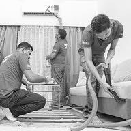 الصفوه للنظافه العامه ومكافحه الحشرات