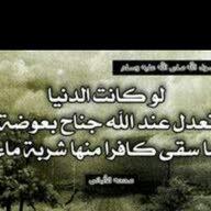 محمد.ابولقمان