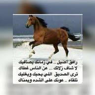 عباس الشمري