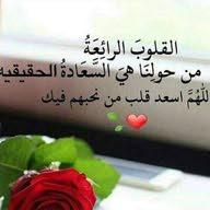 محمد ابو ادم