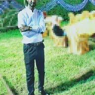 Kamal Ibrahim