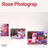 Rose Photographs