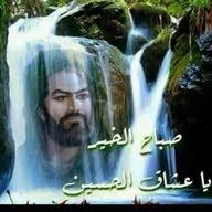 محمود الوفي