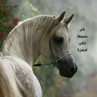 محمد السفياني الحجي