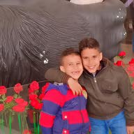 Mohamed Shawky mostafa