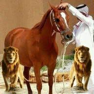 محمد المنيف