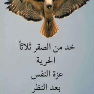 رضا البيلي
