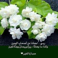 محمد بن عبد الله