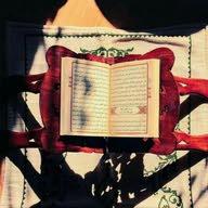 salma mosafa