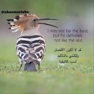 abu ahmed