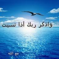 AhmedKamal