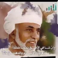 محمد التهامي