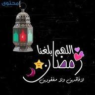 طارق حدائق الهرم Abd El Hafez