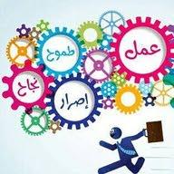amr Shaheen