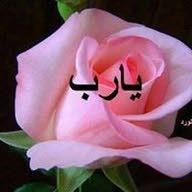 حسانين ابو الخير
