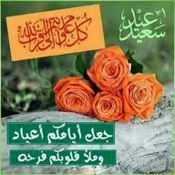 امير ابوميار