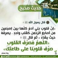 الجارح hadia
