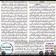 ابوراشد