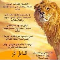 علي ابو حسين