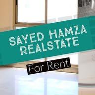 sayed hamza company
