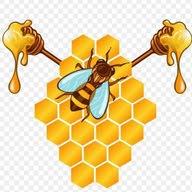 نحلةونخلة