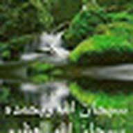 Mahmoud Elsayed