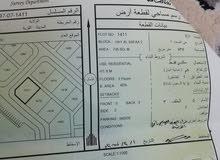 ارض سكنيه في ادم حي الصفااء 2